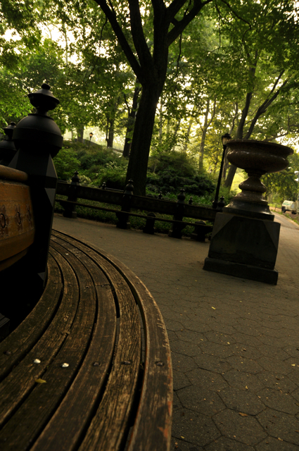 a curved bench in central park