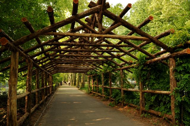 wooden roof above pedestrian walkway