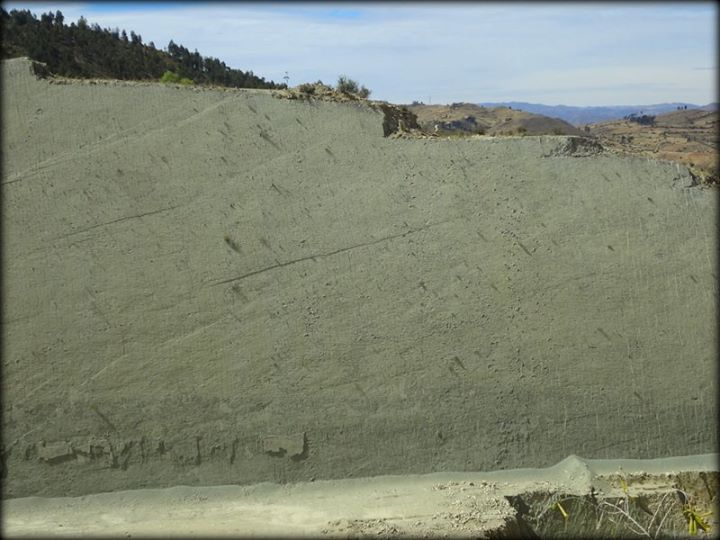Cretaceous park: can you see the dinosaur prints on the wall?