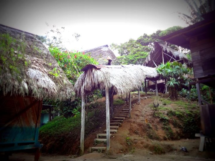 the homestay lodge