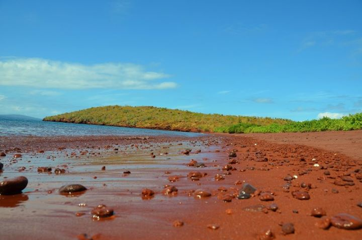 Rabida Island with red sand because of iron deposits.
