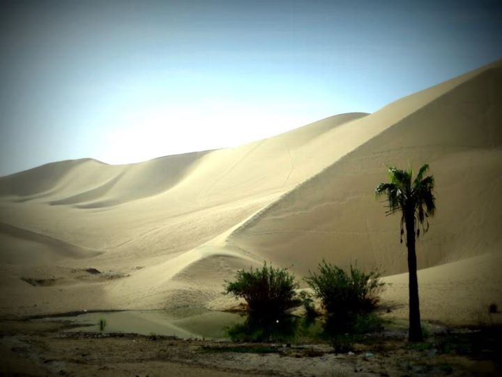 the sand dunes of Ica