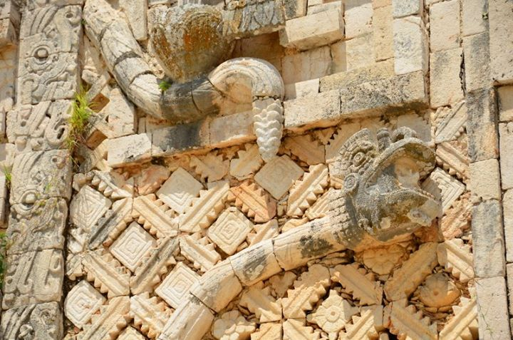 snakes motif