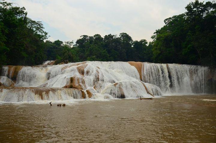 waterfall brown muddy