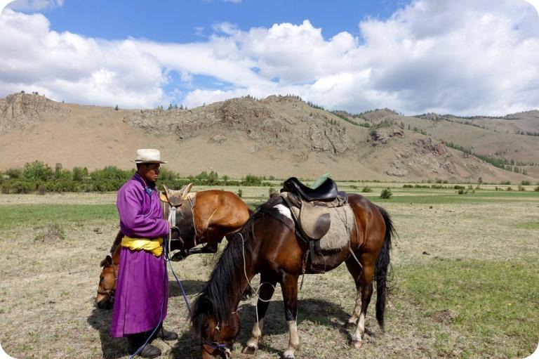 camp horse guide